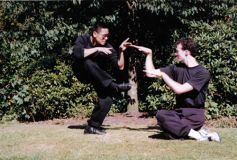 Monkey versus Snake Forms (Gongfu forms)