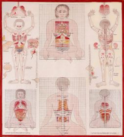 Tibetan Medical Thangka Depicting The Organs