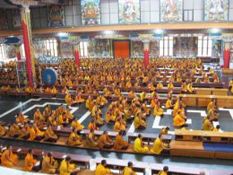 Monks practising in the Golden Temple at Namdroling Monastery