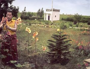 The first colour photograph of HH Penor Rinpoche taken at Namdroling Monastery, India