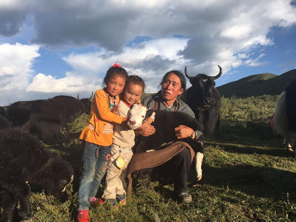 A Tibetan nomad with his children and his herd of yaks